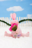 Pink Bunny Royalty Free Stock Photos