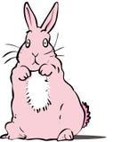 Pink rabbit. Surprised pink rabbit sitting up Stock Images