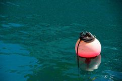 Pink buoy in the sea Royalty Free Stock Photos