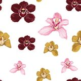 Pink burgundy yellow orchid Phalaenopsis floral seamless pattern. stock illustration