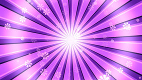 Pink Burst Flowers. Retro sunburst Background with abstract flower particles and light rays. 8K Ultra HD Resolution at 300dpi Vector Illustration