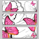Pink butterflies banner templates. Pink butterflies painting on white background Royalty Free Stock Photo