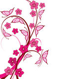 Pink Butterflies Floral Background Royalty Free Stock Photography