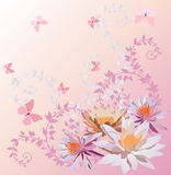 Pink butterflies and lily flowers Stock Photography