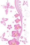 Pink butterflies and orchids pattern Stock Photography