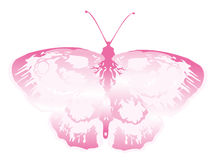 Pink butterfly. Drawing of beautiful butterfly in a white background Stock Image