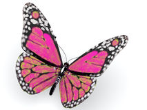 Pink butterfly stock illustration