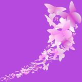 Pink butterfly background Royalty Free Stock Photo