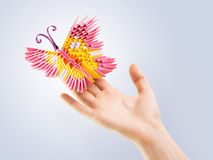 Pink butterfly in a hand Stock Photos