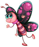 A pink butterfly Stock Photo