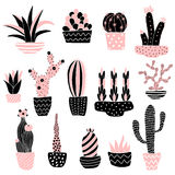 Pink cacti 2 in pots. Cute set of vector cacti illustrations on isolated background royalty free illustration