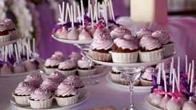 Pink cake pops on a dessert table at party or wedding celebration stock video footage