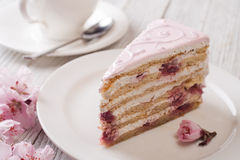 Pink cake Royalty Free Stock Photo