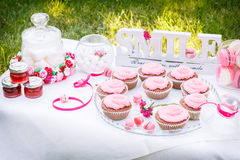 Pink cakes on the table Stock Images