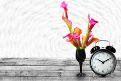 Pink calla lily and clock on vintage background stock photo