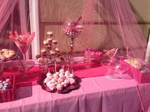 Pink Candy Bar. Pink princess themed candy bar for birthday party Stock Image