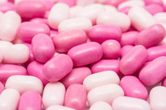 Pink Candy Mints Stock Photos