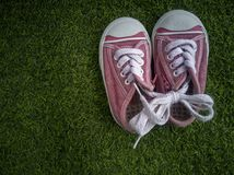 Pink canvas shoes placed on natural green grass royalty free stock photography