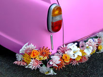 Pink car rear. Pink car from rear with flower bumper stock photos