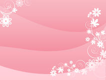 Pink card. With flowers illustration Royalty Free Stock Photography