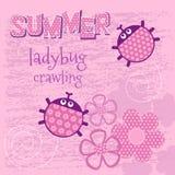 Pink card creeping ladybug vector illustration Royalty Free Stock Image