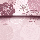 Pink card with roses. Stock Photo