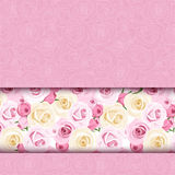 Pink card with roses. Vector eps-10. Stock Image