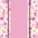 Pink card with roses. Stock Images