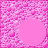 Pink Card with Shiny Water Drops and Label Royalty Free Stock Image
