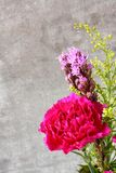 Pink carnation flower on rustic wooden background Stock Image