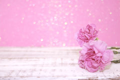 Pink Carnation flowers on rustic white wooden table. Valentine's Stock Photography