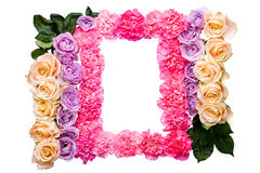 Pink carnation and purple and yellow roses frame Stock Photos