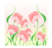 Pink carnations. Vector illustration composed of some pink carnations on a gradient background from yellow to green Royalty Free Stock Images