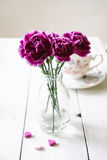 Pink carnations flower bouquet in a vase Royalty Free Stock Images