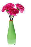 Pink carnations in green vase Royalty Free Stock Photography