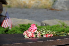 Pink carnations left on memorial Royalty Free Stock Photos