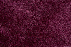 Pink carpet Stock Photography