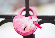 Pink Castle (macro ) selective focus Stock Images