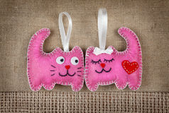 Pink cats in love Royalty Free Stock Photos