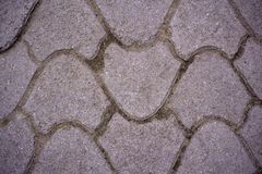 Pink cement block on sidewalk, street paving slab, background and texture, fixed tessellated sidewalk tile . Pink cement block on sidewalk, street paving slab Stock Photo