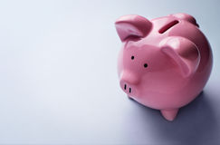 Pink ceramic piggy bank Royalty Free Stock Photos