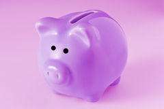 Pink Ceramic Piggy Bank Stock Photo