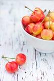 Pink cherries Stock Photos