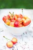 Pink cherries Royalty Free Stock Photos