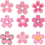 Pink Cherry Blossom  flower set vector with many style include d Royalty Free Stock Photo