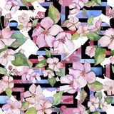 Pink cherry blossoms. Floral botanical flower. Seamless background pattern. Fabric wallpaper print texture. Aquarelle wildflower for background, texture vector illustration