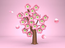 Pink Cherry Blossoms On Pink Background Royalty Free Stock Photography