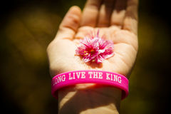 Pink cherry flower on hand with wristband Stock Image