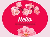 Pink cherry flowers. Hello. There is place for your text on background. royalty free illustration