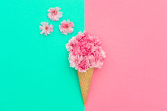 Pink cherry flowers in ice cream waffle cone minimal Stock Image